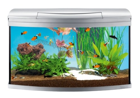Tetra AquaArt® Evolution Line Complet Aquarium Set 100 L